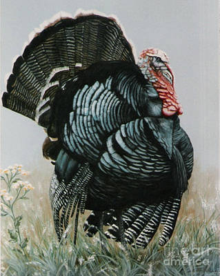 Proud Ole Tom Turkey Art Print by DiDi Higginbotham