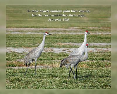 Proverbs 16 9 Art Print