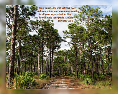 Photograph - Proverbs 3 5-6 by Dawn Currie