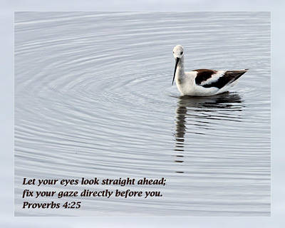 Photograph - Proverbs 4 25 by Dawn Currie