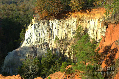 Photograph - Providence Canyon State Park by Donna Brown