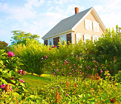 Provincetown Cottage With Green Brown And Pink Art Print