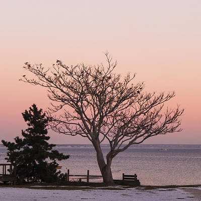 Photograph - Provincetown December 2012 by Frank Winters