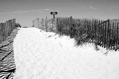 Provincetown Dunes On Cape Cod Art Print by Caroline Stella
