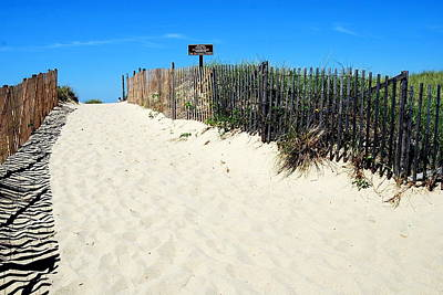 Photograph - Provincetown Dunes In Color by Caroline Stella