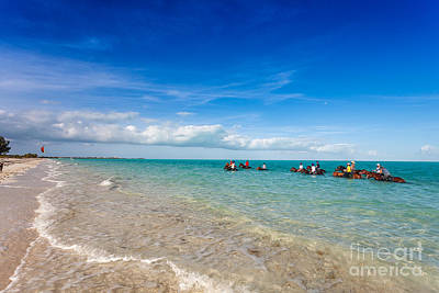 Photograph - Provo Ponies Trail Ride On Long Bay Beach by Jo Ann Snover