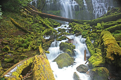 Mckenzie Pass Photograph - Proxy Falls 3 by Ray Rivardo