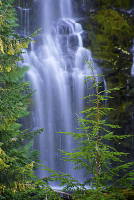 Photograph - Proxy Falls I I I by Doug Davidson
