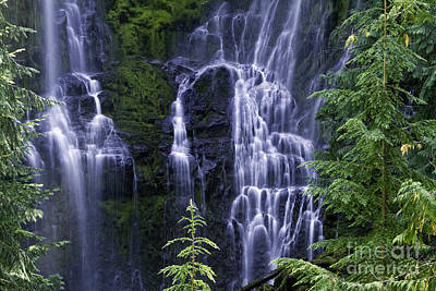 Photograph - Proxy Falls by Stuart Gordon