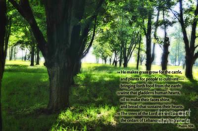 Psalm 104 Art Print