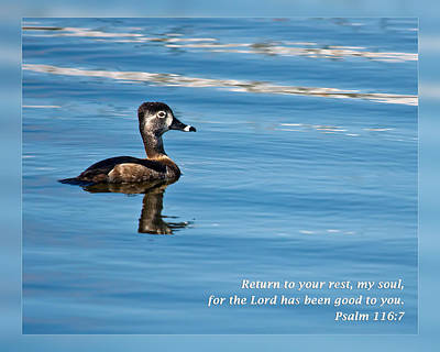Custom Ring Photograph - Psalm 116 7 by Dawn Currie