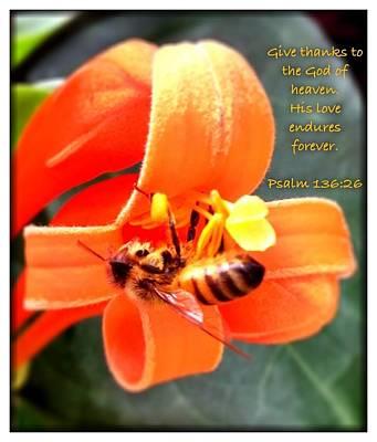 Psalm 136 26 Art Print