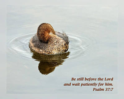 Psalm 37 7 Art Print by Dawn Currie