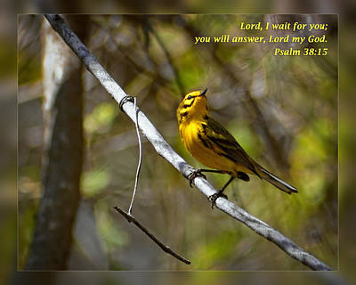 Psalms 38 15 Art Print by Dawn Currie
