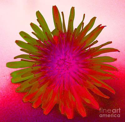 Trippy Digital Art - Psychedelic Daisy 4 by Carol Lynch