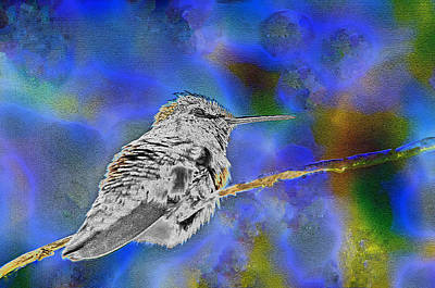 Photograph - Psychedelic Hummer 5 by Tam Ryan