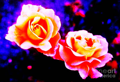 Martin Howard Photograph - Psychedelic Roses by Martin Howard