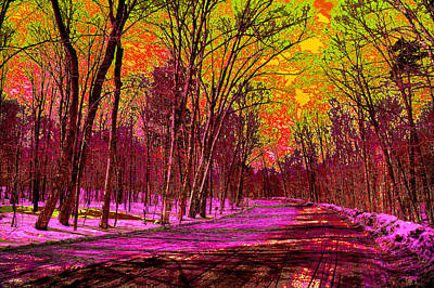 Nature Abstract Digital Art - Psychedelic Winter by David Patterson