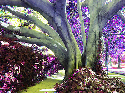 Photograph - Psychedelic Purple Fuschsia Earthy Tree Street Landscape Los Angeles Cool Artistic Affordable Art by Marie Christine Belkadi