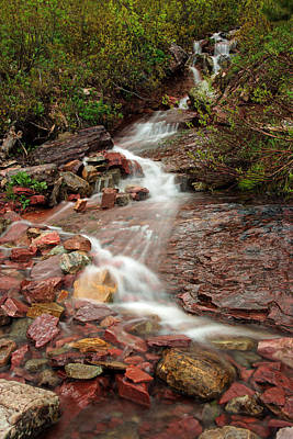 Photograph - Ptarmigan Trail Waterfall No.3 by Daniel Woodrum