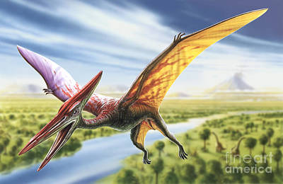 Jurassic Digital Art - Pterodactyl by Adrian Chesterman