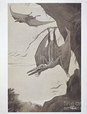 Triassic Photograph - Pterodactyls, 20th-century Artwork by Natural History Museum, London