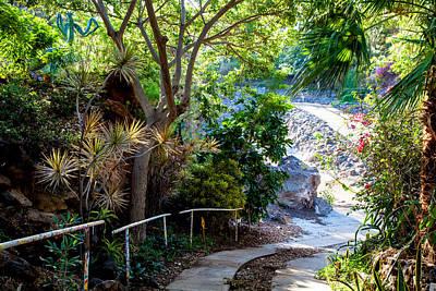 Photograph - Pua Mau Path by Omaste Witkowski