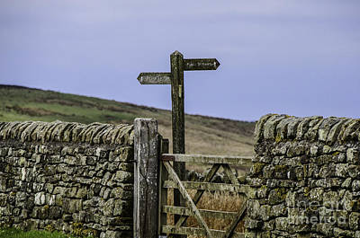 Photograph - Public Bridleway by Mary Carol Story