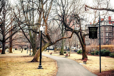 Photograph - Public Garden by Robert Clifford