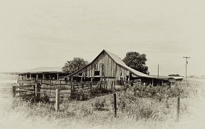 Photograph - Puckerbrush Rd Barn  by Wilma  Birdwell