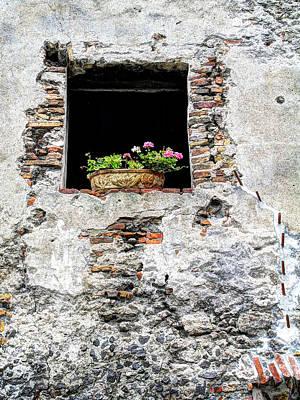 Puebla Window Flowers Art Print by Craig T Burgwardt