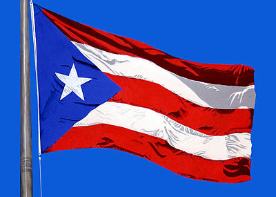 Painting - Puerto Rican Flag by Edward Maldonado