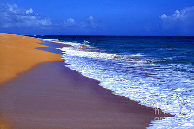 Puerto Rico Seascape Art Print by Thomas R Fletcher