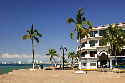 Photograph - Puerto Vallarta Waterfront by Elena Elisseeva