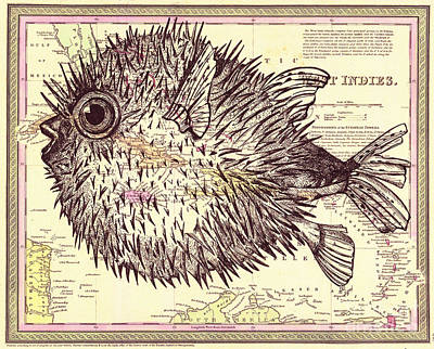Puffer Fish Original by Dawn Rosendahl
