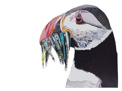 Puffin Painting - Puffin by Catherine Kleeli