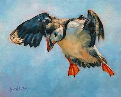 Puffin Painting - Puffin by David Stribbling