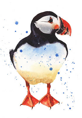 Puffin Painting - Puffin Watercolor by Alison Fennell