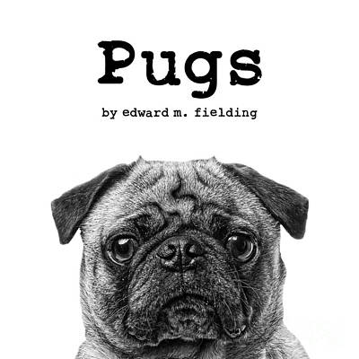 Photograph - Pugs By Edward Fielding by Edward Fielding