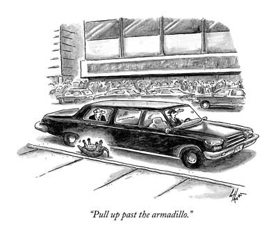 Armadillo Drawing - Pull Up Past The Armadillo by Frank Cotham