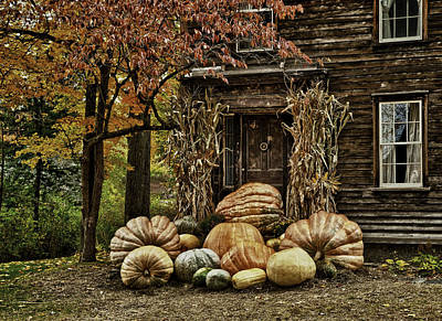 Photograph - Pumkins by Fred LeBlanc