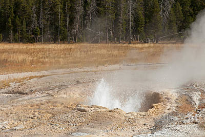 Photograph - Pump Geyser Upper Geyser Basin by Fred Stearns