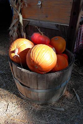 Pumpkin Barrel Art Print by Mark Barclay