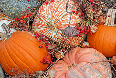 Pumpkin Beauty Art Print