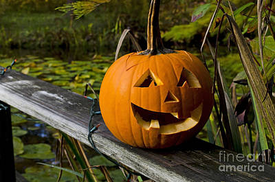 Photograph - Pumpkin By The Pond by Maria Janicki