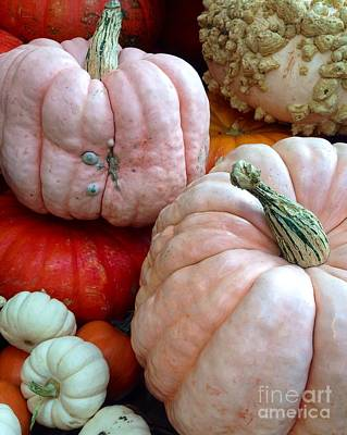 Photograph - Pumpkin Choice by Susan Garren