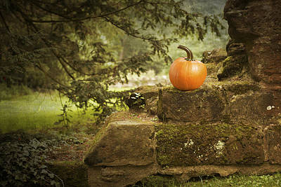 Ruin Photograph - Pumpkin by Amanda Elwell