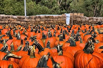 Olantern Photograph - Pumpkin Crush by Scott Hill