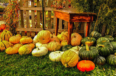 Photograph - Pumpkin Delight by Gene Sherrill