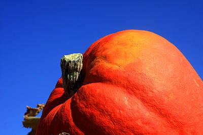 Photograph - Pumpkin by Emanuel Tanjala